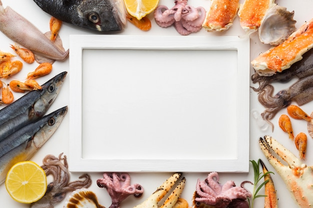 Seafood mix aligned beside frame
