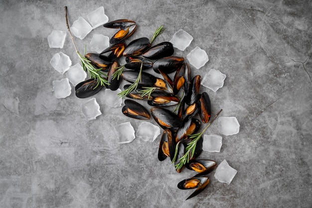 Seafood mussels surrounded by ice cubes