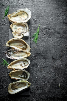 Seafood. raw opened oysters on stone stand on rustic table