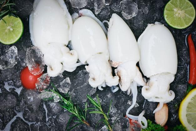 Кальмары из морепродуктов на льду для приготовления еды в ресторане, свежие сырые каракатицы из осьминога, океан для гурманов