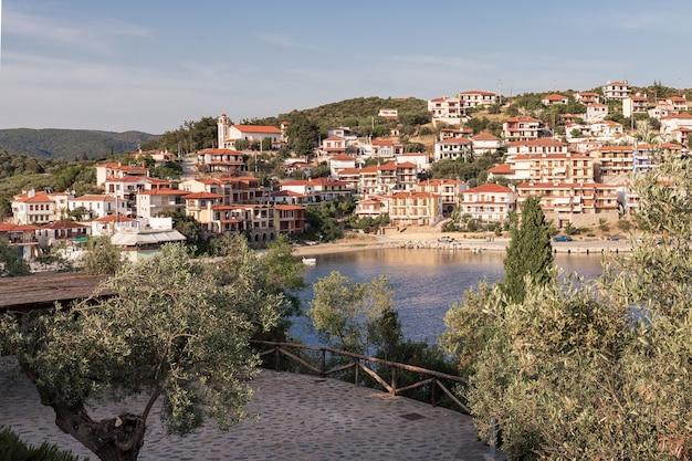 オリーブの木々に囲まれた海辺の道は、海岸の丘にある小さな地中海の町に通じています