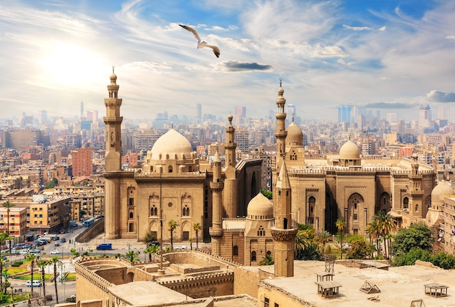 Seagull flies by the mosque-madrassa of sultan hassan from the citadel, cairo, egypt.