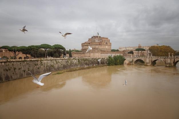 イタリア、ローマの聖天使テヴェレ城の上空を飛ぶカモメ
