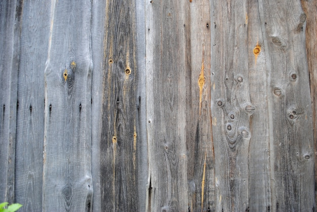 Seamless bright grey wood texture