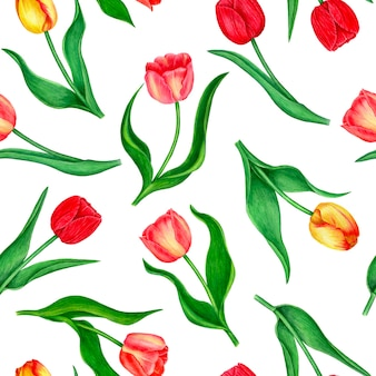 Seamless floral patter with tulips