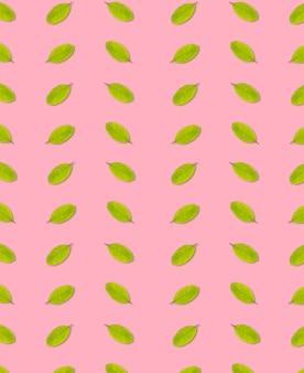 Seamless of leaf green color on pink background,leaves