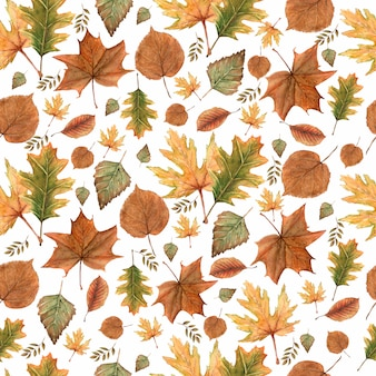 Seamless pattern of autumn fall leaves