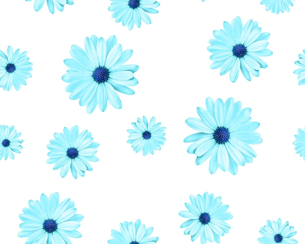 Seamless pattern of chamomiles with a blue center on a white background