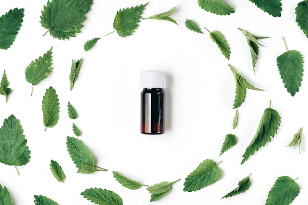 Seamless pattern of fresh nettle, peppermint and bottle of essential oil on