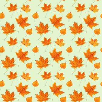 Seamless pattern from made of dry autumn leaves