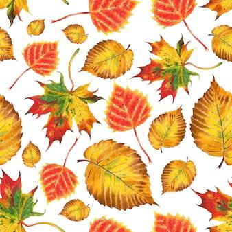 Бесшовный фон из осенних листьев березовый вяз клен, акварель иллюстрации, изолированные на белом фоне