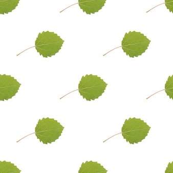 白い背景で隔離の色の葉のシームレスなパターン