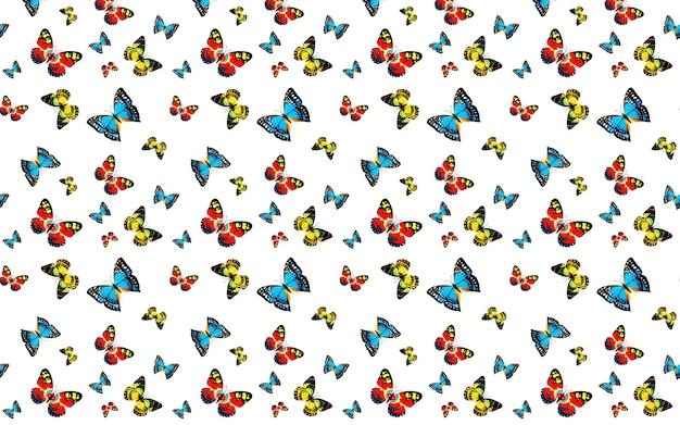 蝶と白い背景の上のシームレスなパターン