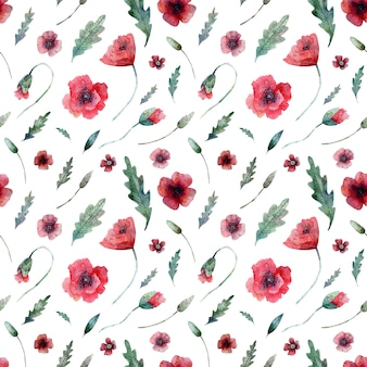Seamless pattern of poppies on white