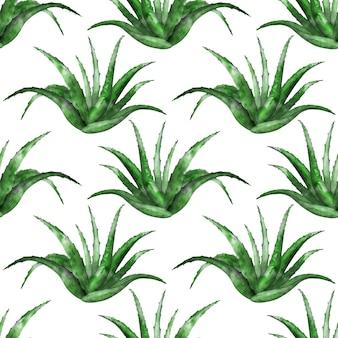 白い背景の上のアロエベラ植物とのシームレスなパターン
