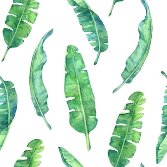 Seamless pattern with banana leaves. hand painted in watercolor.