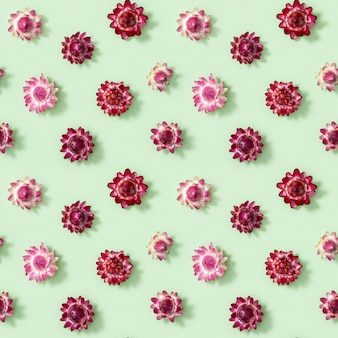 Seamless pattern with close-up bud of dry flowers, small red blossoms on green.