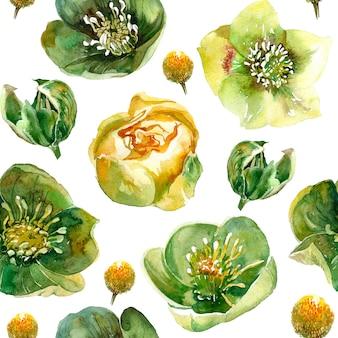 花とのシームレスなパターン。ヘレボルス