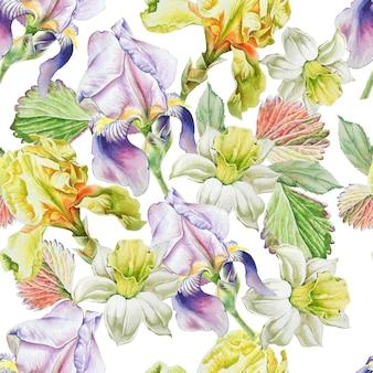 花とのシームレスなパターン。水仙。虹彩。水彩イラスト。手で書いた。