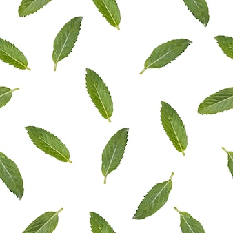 Seamless pattern with the image of mint leaves.