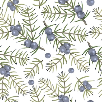ジュニパーベリーと白い背景の上の枝とのシームレスなパターン