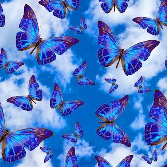 Бесшовный фон с тропическими бабочками на фоне голубого неба с облаками