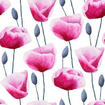 수채화 손으로 완벽 한 패턴 그린 양 귀 비 꽃 흰색 표면에 고립