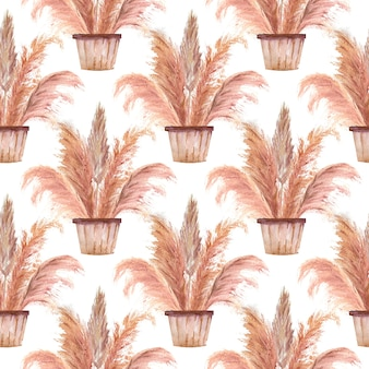 Seamless patterns with pampas grass in pots in the boho style on a white isolated background. watercolor illustration.