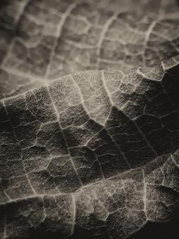 원활한 임의 채우기 잎 배경