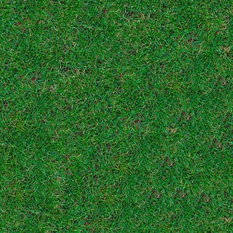 Seamless tileable texture of green trimmed grass on the lawn