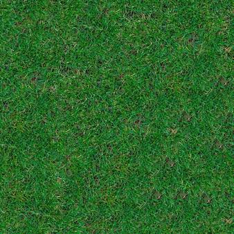 芝生の上の緑のトリミングされた草のシームレスなタイル張りのテクスチャ