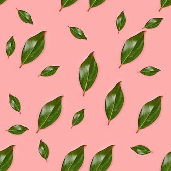 Seamless tropical jungle leaves pattern, magnolia