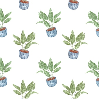 Seamless watercolor pattern with indoor plants-homemade banana on white background, watercolor illustration for home