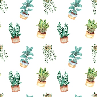 Seamless watercolor pattern with indoor plants on white background, watercolor illustration for home