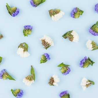 Seamless white and purple flowers on blue background