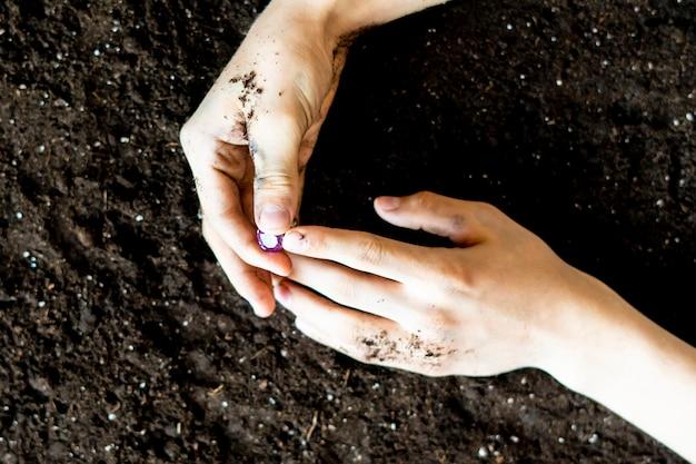 Искатель руки держит алмаз в почве