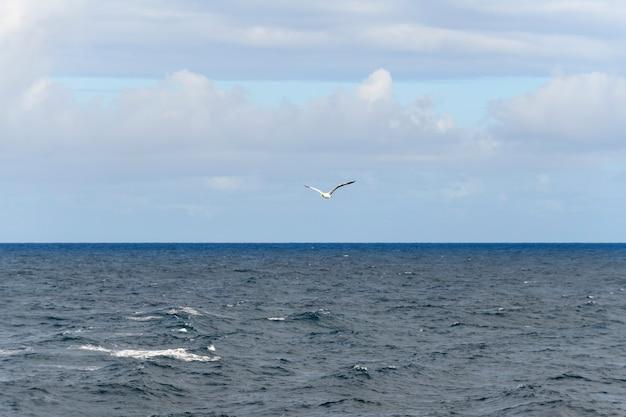 Морской пейзаж, синее море. спокойная погода. вид с судна.