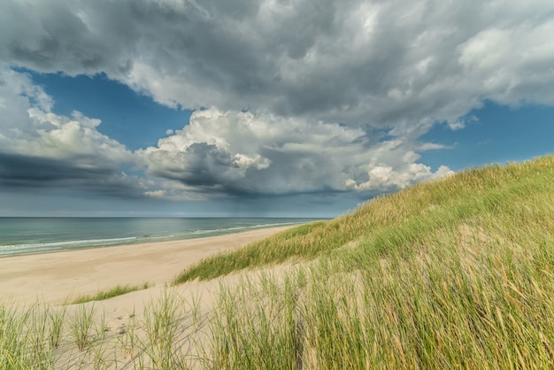 Seascape of the calm sea, empty beach with few grasses and the cloudy sky