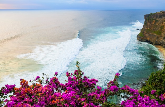 Seascape, ocean at sunset. flowers on ocean landscape background near uluwatu temple at sunset, bali, indonesia. bougainvillea flowers at the foreground.