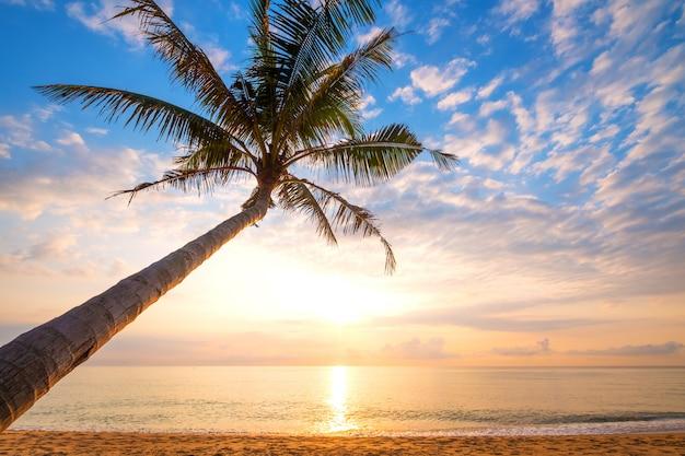 日の出のヤシの木と美しい熱帯のビーチの海の絵。夏のバックグラウンドで海の景色のビーチ。