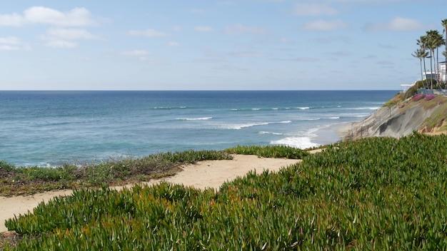 Seascape vista point, california coast usa. ocean tide, blue sea wave overlook. ice plant succulent.