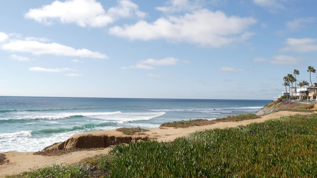 Seascape vista point california coast usa ocean tide blue sea wave overlook ice plant succulent