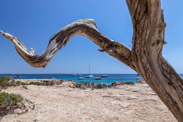 Морской пейзаж с лазурным морем и яхтами у побережья ибицы, испания