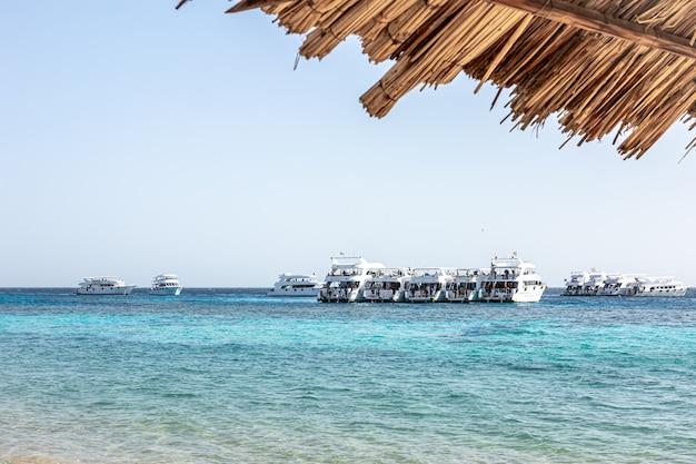 Морской пейзаж с яхтами в море в ясную солнечную погоду.