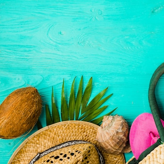 Seashell and hat with plants near fruit and flip flop in bag