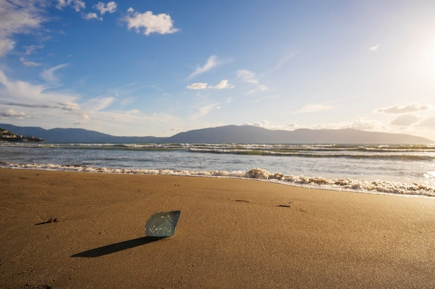 砂浜の貝殻砂浜の貝殻は砂の休日の休暇の熱帯の概念の海洋観光に巻き貝