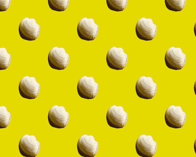 Морская ракушка на желтом второстепенном образце