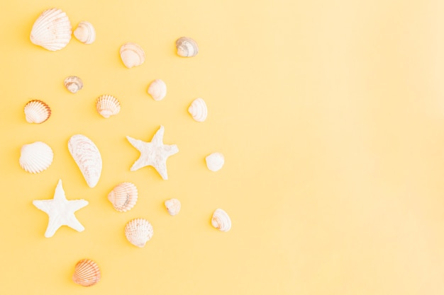 Seashell and starfish arrangement on yellow background