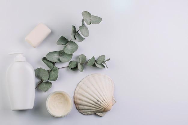 Seashell and twig near cosmetics