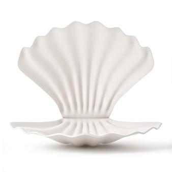 真珠の白い背景で隔離の貝殻
